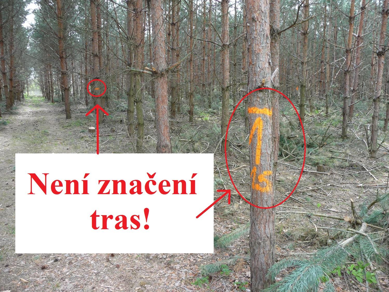značení lesníků pro kácení stromů - ne značení tras